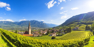 CLKMN87638 Termeno,Bolzano province,Trentino Alto Adige,Italy  Views of the vineyards and the church of Saints Quirico and Giulitta.