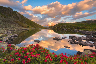 CLKMR91331 Grom lake at sunset, Mortirolo pass in Lombardy district, Brescia province, Italy.