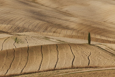 CLKSC92142 Orcia Valley fields in autumn, Italy, Tuscany, Siena District, San Quirico