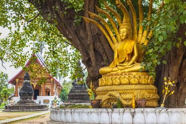 LS02066 Laos, Luang Prabang, Wat Wisunarat, golden buddha