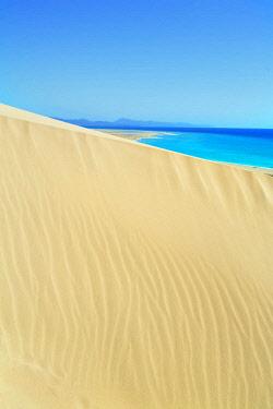 SPA8169AW Sandy dunes at Sotavento Beach, Jandia Peninsula, Fuerteventura, Canary Islands, Spain