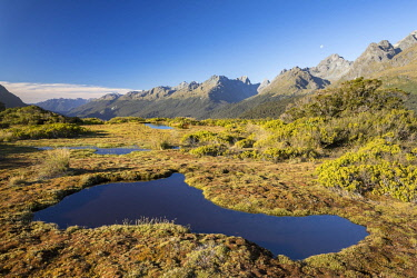 IBXROH04717081 Pond at Key Summit, Fiordland National Park mountain range, Southland, New Zealand, Oceania