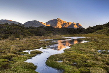 IBXROH04717084 Ailsa Mountains reflected in pond at Key Summit at evening mood, mountain range of Fiordland National Park, Southland, New Zealand, Oceania