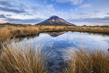 IBXROH04718759 Stratovolcano Mount Taranaki or Mount Egmont reflected in Pouakai Tarn, Mount Egmont National Park, Taranaki, North Island, New Zealand, Oceania