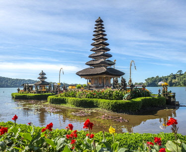 IBXMAB04718134 Pura Ulun Danu Bratan Buddhist water temple with flowers, Bratan Lake, Bali, Indonesia, Asia