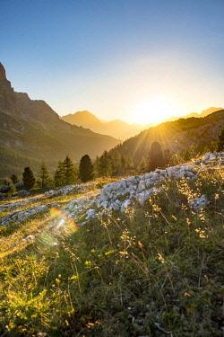 IBXMAB04634535 Sunrise in front of mountain silhouette with mountain meadow, view to Monte Cristallo, Passo Falzarego, Falzarego Pass, Dolomites, South Tyrol, Trentino-Alto Adige, Italy, Europe