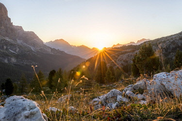 IBXMAB04718188 Sunrise in front of mountain silhouette with mountain meadow, view to Monte Cristallo, Passo Falzarego, Falzarego Pass, Dolomites, South Tyrol, Trentino-Alto Adige, Italy, Europe
