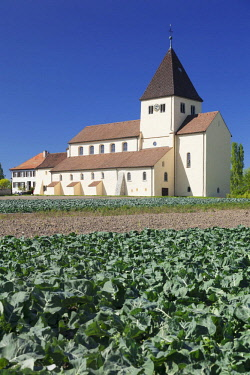 IBXMAL04375287 St. George's Church, vegetable fields in front, Obernzell, Reichenau Island, Lake Constance, Baden-Wurttemberg, Germany, Europe