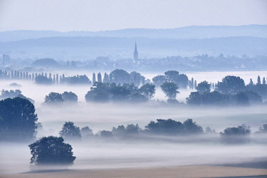 IBXMKL04719859 Early morning fog over the Radolfzell Aachried, behind it the Lake Constance with the city Radolfzell, district Konstanz, Baden-Wurttemberg, Germany, Europe