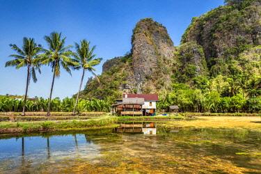 IDA0831AW Karst Mountain landscape, Ramang Ramang, Sulawesi, Indonesia