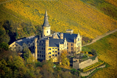 IBLBLO04285503 Arenfels Castle in vineyards in autumn, Bad Breisig, Rhineland-Palatinate, Germany, Europe