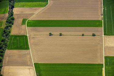 IBLBLO04367474 Aerial view, fields, cornfields, Neuss, Lower Rhine, North Rhine-Westphalia, Germany, Europe