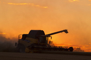 IBLTJE04716826 Harvester harvests barley on a field, grain harvest, silhouette in the sunset, Saxony, Germany, Europe