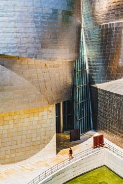 SPA8212AW Spain, Basque Country, Bilbao. Guggenheim Museum Bilbao designed by Frank Gehry.