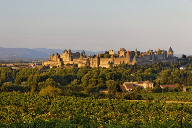 IBLMSK02304366 Carcassonne in the evening light, Languedoc-Roussillon region, department of Aude, France, Europe