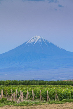 AM01340 Armenia, Khor Virap, view of Little Mt. Ararat
