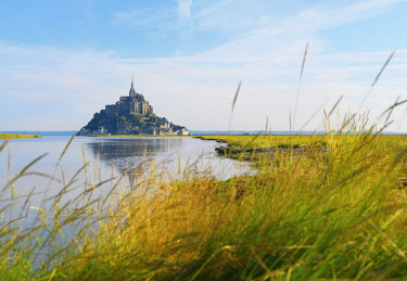FRA10530AW France, Normandy, Le Mont Saint Michel, grass in foreground