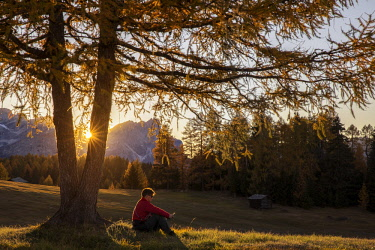FVG029037 Tourist relaxes under an autumnal larch in the Armentara meadows, Fanes Senes Braies natural park, Val Badia, Trentino Alto Adige, Italy