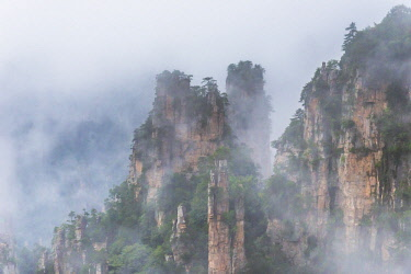 FVG033430 Detail of Hallelujah mountains or Avatar mountains in the Zhangjiajie National Forest Park, Hunan, China