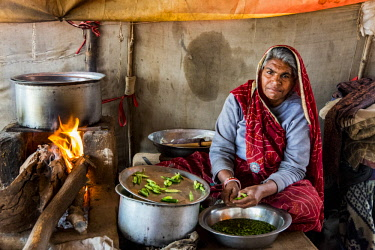 AS10AJN0075 India, Rajasthan. Nagaur, No Water No Life expedition, Nagaur Cattle Fair, kitchen in tent, woman cooking peas