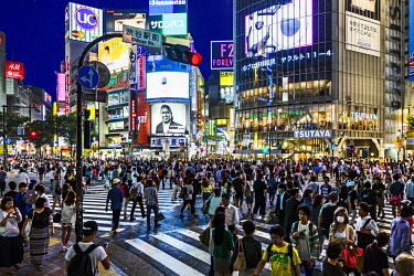 AS15MGL0086 Tokyo, Japan. Pedestrian crossing in Shibuya District in the evening