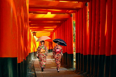 AS15MGL0089 Kyoto, Japan. Two women in kimono walk along the torii gate path of Fushimi Inari Taisha shrine