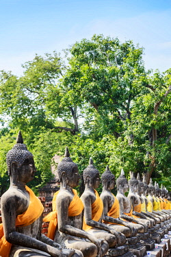 AS36MGL0039 Ayutthaya, Thailand. Row of stone Buddha wrapped in saffron cloth robes