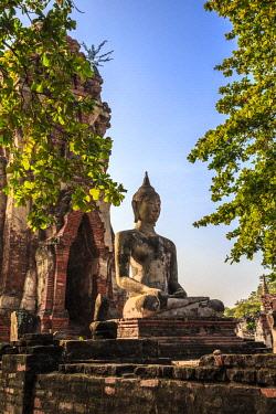 AS36MGL0050 Ayutthaya, Thailand. Large Buddha at Wat Phra Mahathat, Ayutthaya Historical Park, near Bangkok.