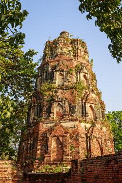 AS36MGL0051 Ayutthaya, Thailand. The temples of Wat Phra Mahathat