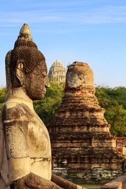 AS36MGL0052 Ayutthaya, Thailand. Large Buddha at Wat Phra Mahathat, Ayutthaya Historical Park, near Bangkok.
