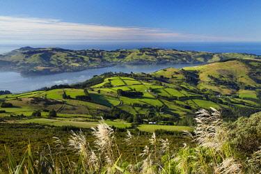 AU02DWA9820 Farmland at Upper Junction, and Otago Harbor and Otago Peninsula, Dunedin, South Island, New Zealand