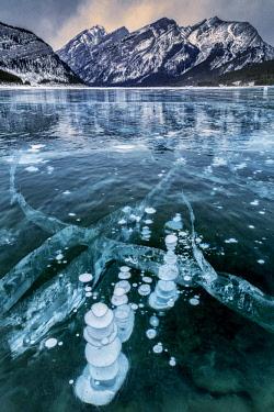 CN01ACO0000 Canada, Alberta, Spray Valley Provincial Park. Frozen methane bubbles in Spray Lakes