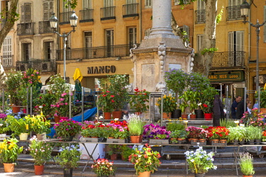 EU09BJN1974 Weekly Flower Market at Place de l'Hotel de Ville, Aix-en-Provence, France