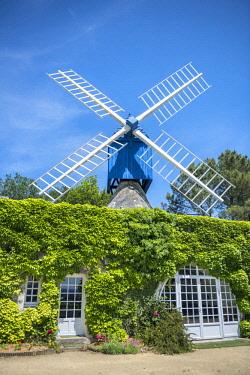 EU09JEN0282 Le Moulin Bleu, Bourgueil, Loire Valley, France