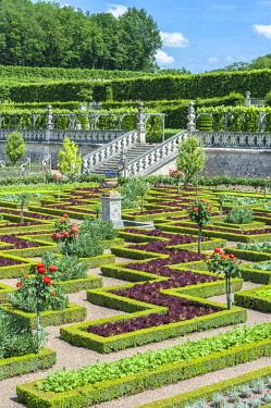 EU09LEN0896 Chateau de Villandry, Loire Valley, France