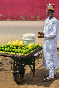 NGR1025 Nigeria, Kano State, Kano. A fruit seller with his Canary melons and green Garden Eggs displayed on an improvised wheel barrow.  Garden Eggs are a type of eggplant with as pleasantly bitter taste; the...