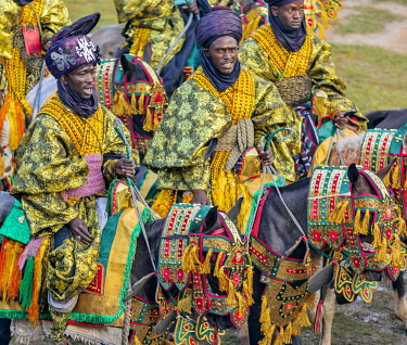 NGR1109 Nigeria, Kano State, Kano. Hausa men dressed in bright-coloured flowing robes and indigo turbans participate in a Durbar parade.  Their fine horses are equally impressive, adorned with ornate ceremoni...