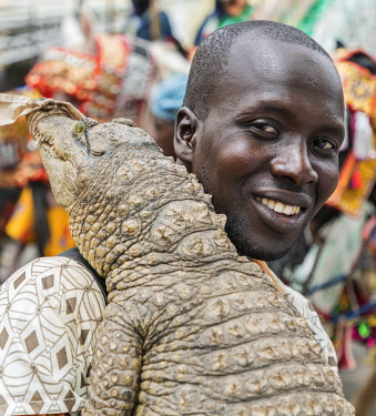 NGR1142 Nigeria, Kano State, Kano. A Hausa man carries a live crocodile over one shoulder during a Durbar celebration.  He does this as sign of his fearlessness.