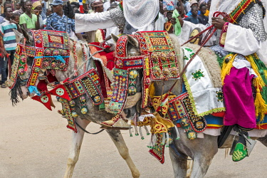 NGR1160 Nigeria, Kano State, Kano. Two Hausa horses adorned with very ornate and colourful regalia for Durbar celebrations.