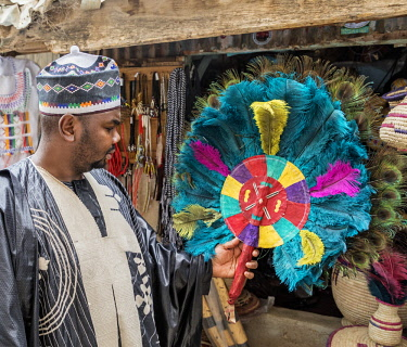 NGR1169 Nigeria, Kano State, Kano. A man admires a traditional Hausa fan made of dyed ostrich feathers and peacock feathers in the sprawling 15th century Kurmi market.