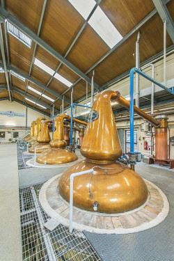 EU30RTI0087 UK, Scotland, Moray, Dufftown. Glenfiddich Distillery
