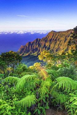 US12RBS0263 Kalalau Valley and the Na Pali Coast from the Pihea Trail, Kokee State Park, Kauai, Hawaii, USA