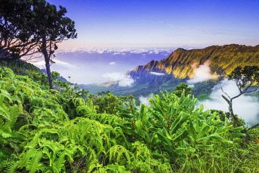 US12RBS0266 Kalalau Valley and the Na Pali Coast from the Pihea Trail, Kokee State Park, Kauai, Hawaii, USA