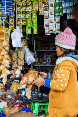 MYA2250 Myanmar, Mindat. A young girl weighing a chicken at a stall in the market.