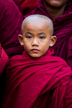 MYA2219 Myanmar, Bagan. Young novice monks lining up to receive alms at the Ananda Festival.