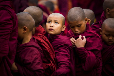 MYA2220 Myanmar, Bagan. Young novice monks lining up to receive alms at the Ananda Festival.