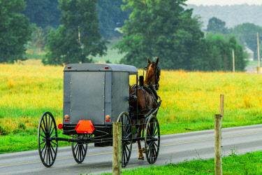 us39jsi0035 Lancaster County, Pennsylvania An Amish Grey Buggy and Horse, Clop Along the Road