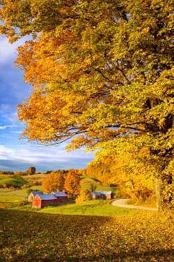 US46BJN0081 Autumn dawn at the Jenne Farm near South Woodstock, Vermont, USA