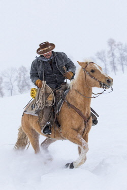 Cowboy riding his horse in winter, Hideout Ranch, Shell, Wyoming. (MR, PR)
