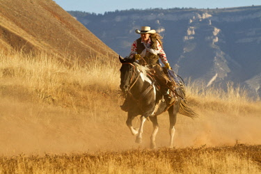 US51HLL0067 Usa, Wyoming, Shell, The Hideout Ranch, Cowgirl Riding in the Dust in Early Morning Light (MR, PR)